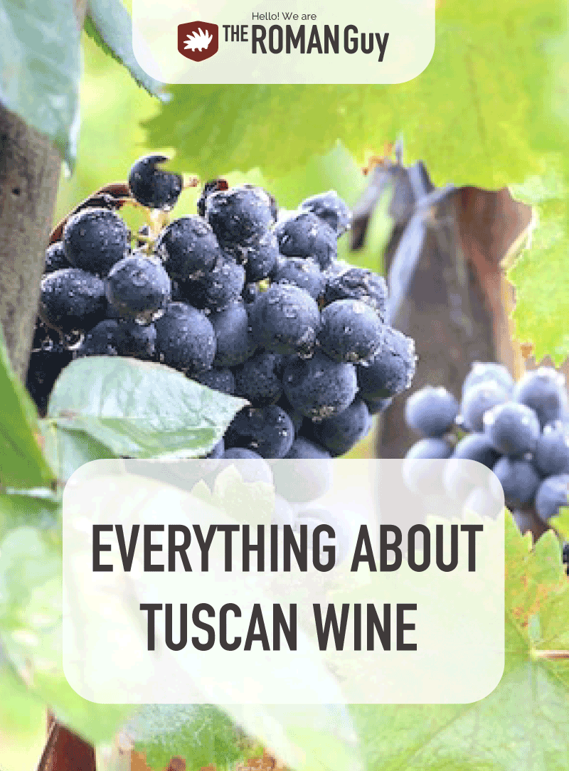 Learn about the many delicious wine options in Tuscany! | The Roman Guy Italy tours