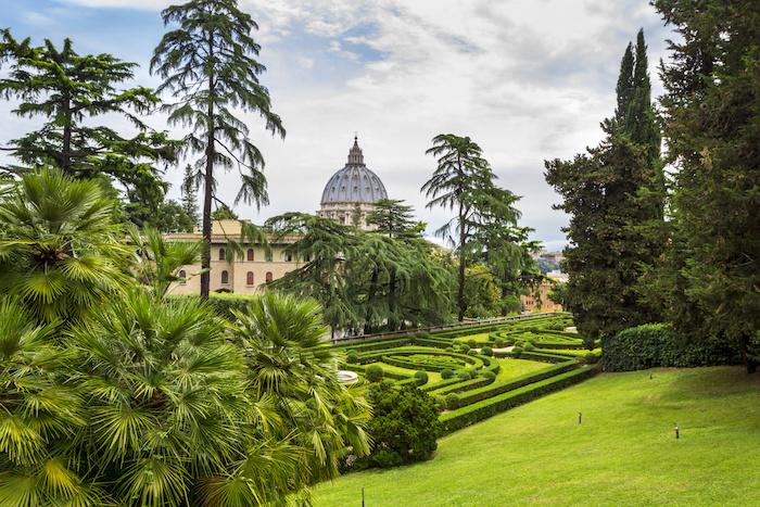 VATICAN, VATICAN CITY - JUNE 16, 2014: View at St Peter's Basilica (Basilica di San Pietro) from Vatican Gardens with beautiful green lawns, pines and palm trees, Rome, Italy.
