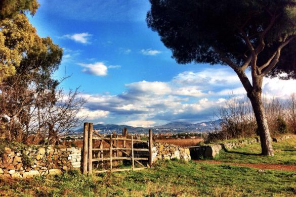 Hidden Gems in Rome Via Appia