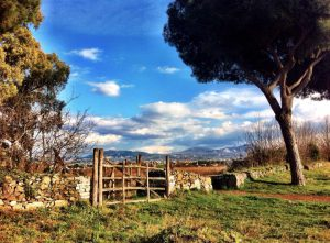 Things to do in Rome - Via Appia