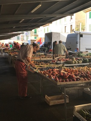 Things to do in Florence - Mercato di Sant'Ambrogio
