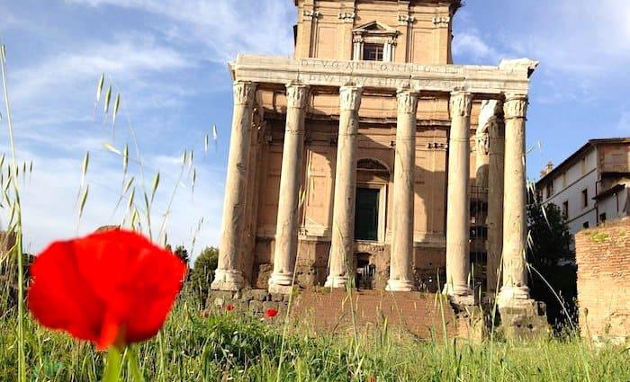 the roman guy colosseum tour