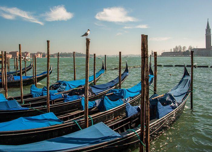 Venice gondolas docked in Venice, Italy